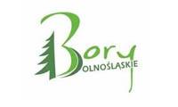 logo-borydolnoslaskie